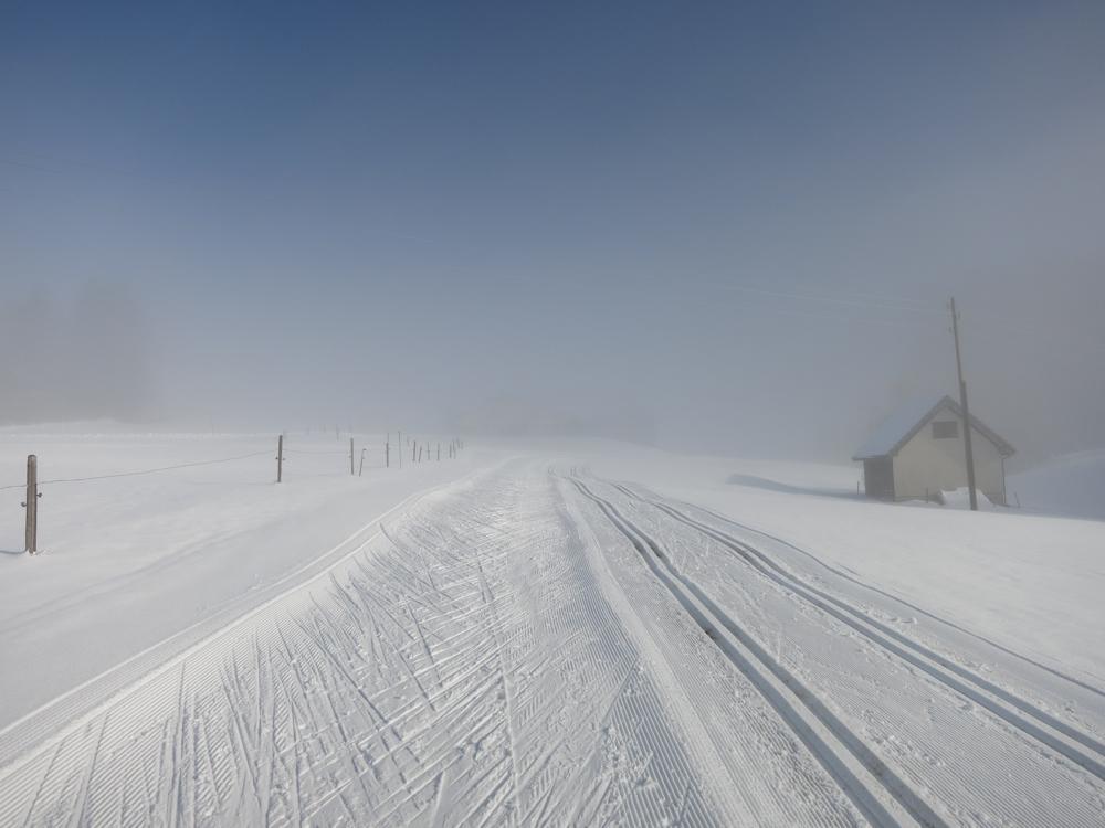 Laufen zwischen dem Nebel