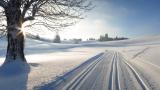 Ein Wintertag auf der Loipe